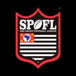 campeonato_sao_paulo_football_league