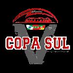 copa_sul_v