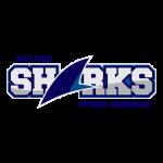 ma_sao_luiz_sharks_2