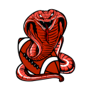 mt_campo_grande_cobras