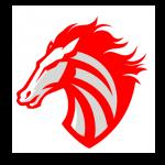 pe_recife_horses