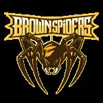 pr_brown_spiders