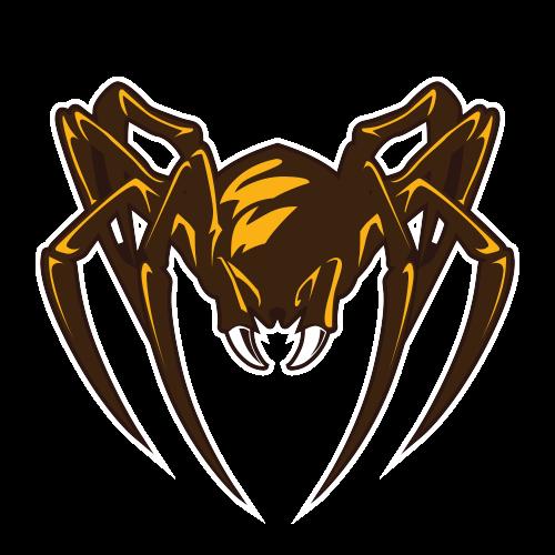 Brown Spiders Futebol Americano - Salão Oval b82810dc2c777