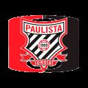 sp_paulista_ocelots