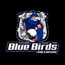 sp_sao_caetano_bluebirds