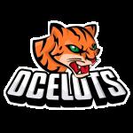 sp_ocelots_football