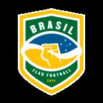 brasil_oncas_flag_football