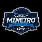 campeonato_mineiro_2018 (1)