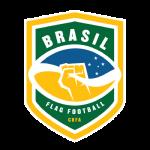brasil_oncas_flag_football (1)