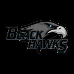 sc_black_hawks_alt_2