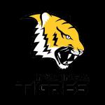 mg_ipatinga_tigres_alt